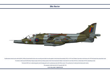 Harrier GB 3 Sqn 1 by WS-Clave
