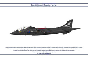 Harrier GB 899 Squadron 1 by WS-Clave