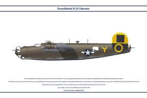 B-24 USA 460th BG 1 by WS-Clave