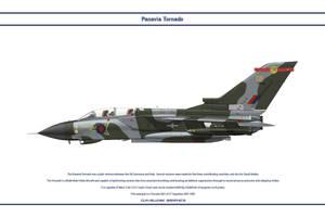 Tornado GB 27 Sqn 1 by WS-Clave