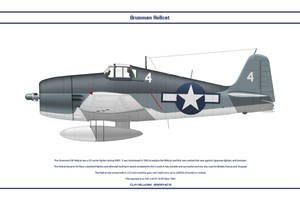 Hellcat USA VF-19 by WS-Clave