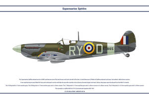 Spitfire Mk V GB 313 Sqn by WS-Clave