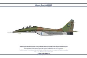 MiG-29 Ukraine 2 by WS-Clave
