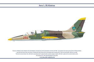 L-39 Mozambique 1 by WS-Clave
