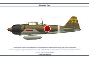 Zero Japan 202nd Kokutai 1 by WS-Clave