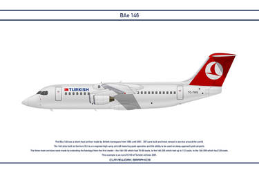 Bae 146 Turkish Airlines 2 by WS-Clave