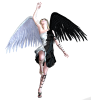 Angel Blk and White Wings PNG by Variety-Stock