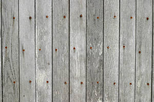 Wood 4 by lostandtaken
