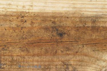 Wood 6 by lostandtaken