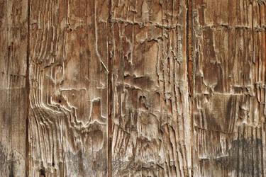 Wood 7 by lostandtaken