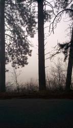 white foggy walls by mothepro