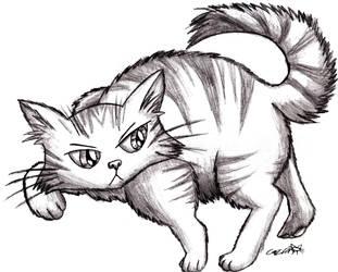 fat cat by Cazra