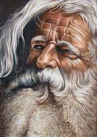 Bearded Man by ronmonroe