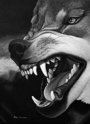 The Snarl by ronmonroe