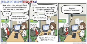The Adventures of Regular Cat - Skillset by tomfonder