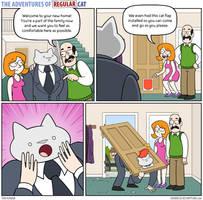 The Adventures of Regular Cat - Cat Flap by tomfonder
