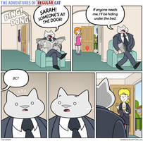The Adventures of Regular Cat - Visitor by tomfonder