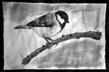Bird3 by HumanHunter