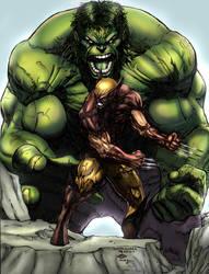 Hulk vs Wolverine by KRTArt