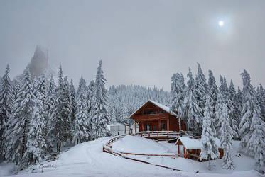 Winter sun by BogdanEpure