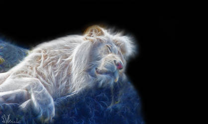 Sleeping lion by Xiandre
