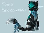 Shin Shadowpool Request by Autumnleaf89