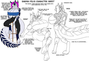 Sandra Felis Character Sheet by strredwolf