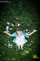 Alice - Down the Rabbit Hole by kirawinter