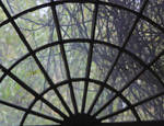 The Window by DieCooleSocke