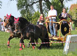 archery on celtic cart by DieCooleSocke