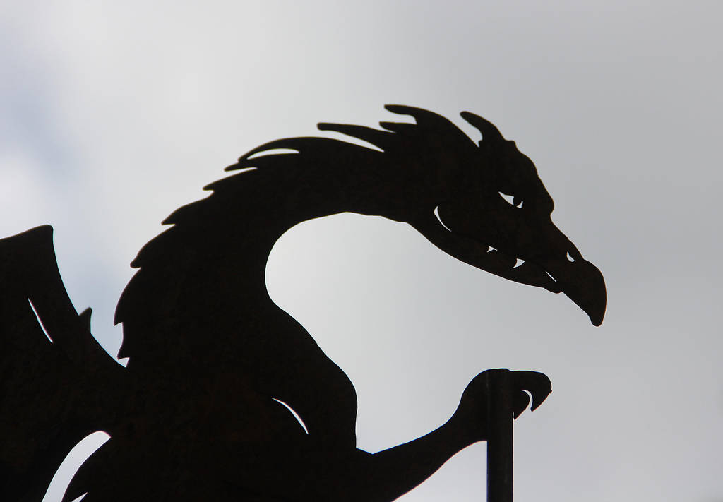 the sign of the dragon by DieCooleSocke