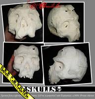 Deformed Skull 01 by crudelia
