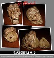 Deformed Skull 02 by crudelia