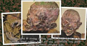 Martin's burnt head 02 by crudelia