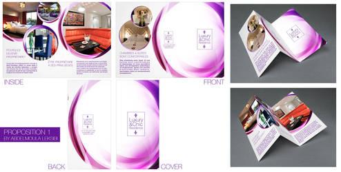 Brochure #1 by baagnamar