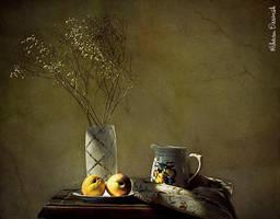 3066 by Riham-Darwish