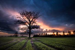 20 minutes before rain by Erixxfoto