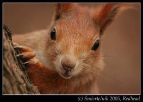 Redhead by Smiertelnik