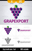 Grapexport - Logo Template by doghead