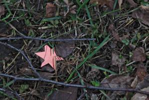 Fallen Star by DianaShadoweye