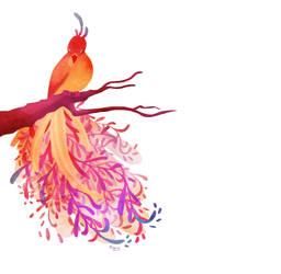 Rainbow Bird by Katikut