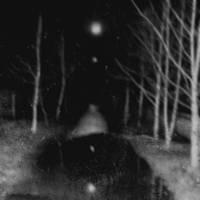 Sleepwalking by Anguis-IX