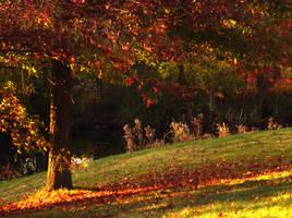 An Autumn Stroll VI by SaretteSouveraine