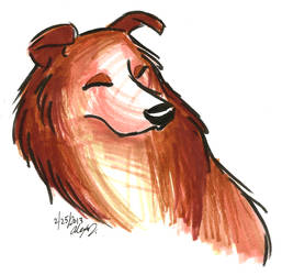Brush Breeds-Rough Collie by Stray-Sketches