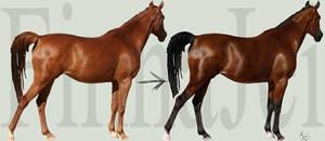 Horse Color Change Tutorial by FinnaJei