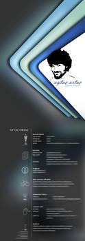 CV by Lyn3x