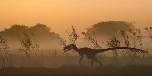Morning Run by PWNZ3R-Dragon