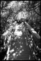 Bridge to Fantasy by Nestor2k