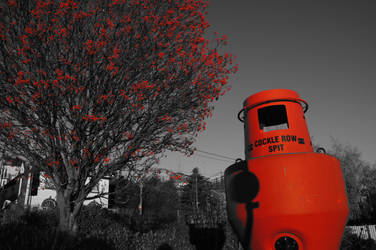 Port buoy at Leigh on Sea by Greattie