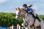 Chestnut Roan Sabino Stallion Showjumping Stock by popui